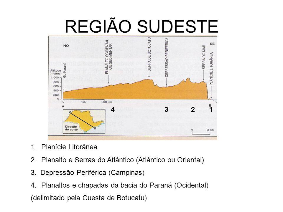 REGIÃO SUDESTE 1234 1.Planície Litorânea 2.Planalto e Serras do Atlântico (Atlântico ou Oriental) 3. Depressão Periférica (Campinas) 4.Planaltos e cha