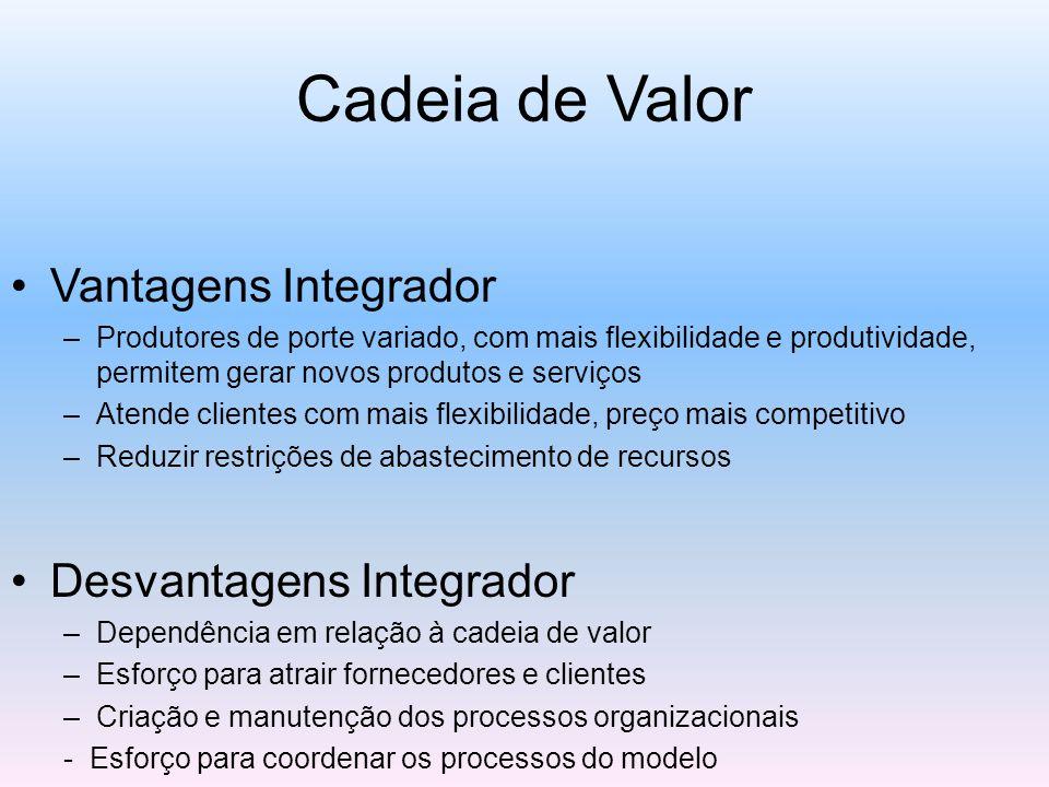 Cadeia de Valor Vantagens Integrador –Produtores de porte variado, com mais flexibilidade e produtividade, permitem gerar novos produtos e serviços –Atende clientes com mais flexibilidade, preço mais competitivo –Reduzir restrições de abastecimento de recursos Desvantagens Integrador –Dependência em relação à cadeia de valor –Esforço para atrair fornecedores e clientes –Criação e manutenção dos processos organizacionais - Esforço para coordenar os processos do modelo
