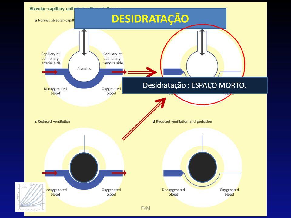 DESIDRATAÇÃO PVM Desidratação : ESPAÇO MORTO.