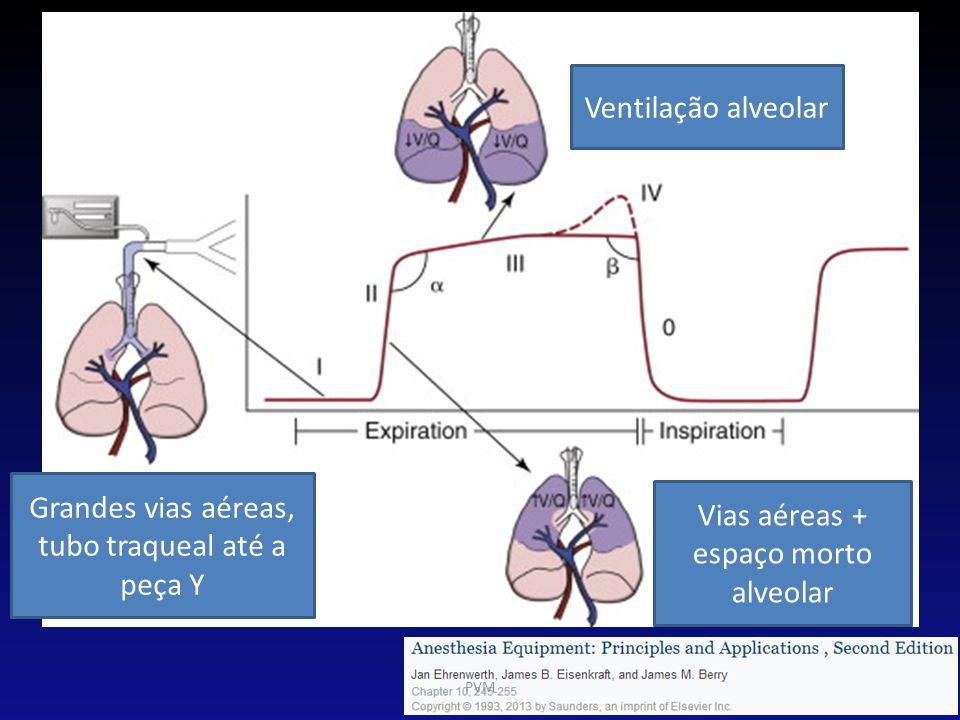 Grandes vias aéreas, tubo traqueal até a peça Y Vias aéreas + espaço morto alveolar Ventilação alveolar