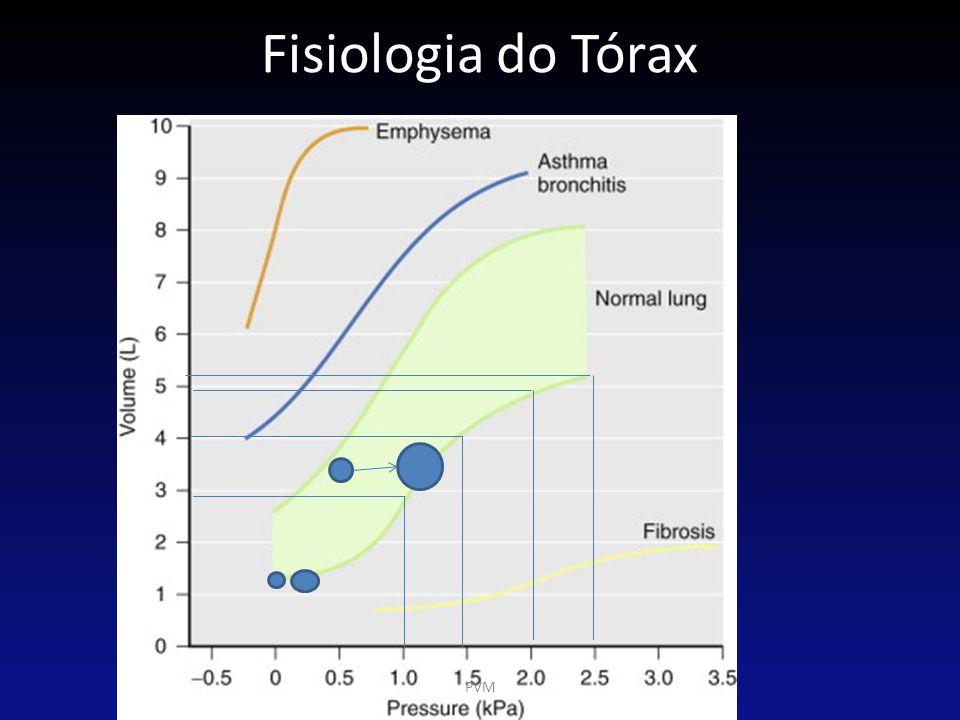 Complacência Torácica O que mantém a CRF – Tórax: arcabouço ósseo e tônus da musculatura intercostal.