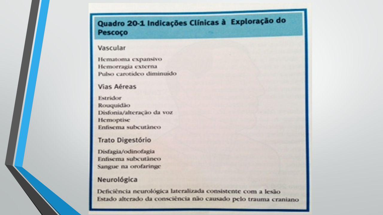 TÉCNICA DE EXPLORAÇÃO DO PESCOÇO Incisão oblíqua ao longo da borda anterior de M.