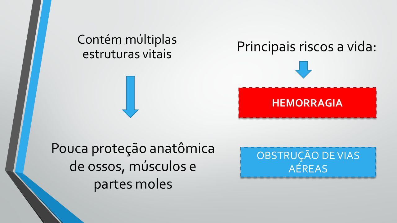 Contém múltiplas estruturas vitais Principais riscos a vida: Pouca proteção anatômica de ossos, músculos e partes moles HEMORRAGIA OBSTRUÇÃO DE VIAS A