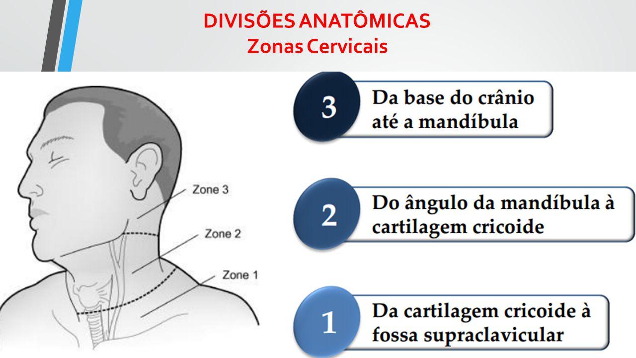 Zonas Cervicais