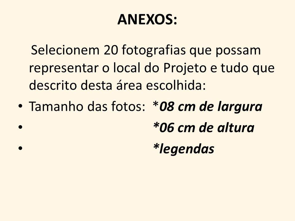 ANEXOS: Selecionem 20 fotografias que possam representar o local do Projeto e tudo que descrito desta área escolhida: Tamanho das fotos: *08 cm de largura *06 cm de altura *legendas