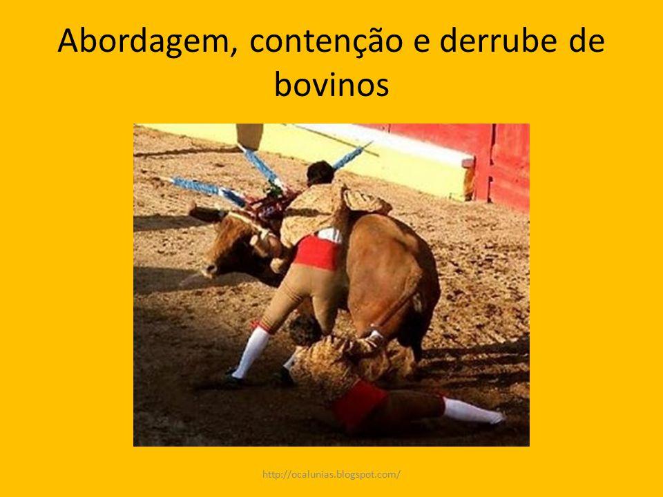 Abordagem, contenção e derrube de bovinos http://ocalunias.blogspot.com/