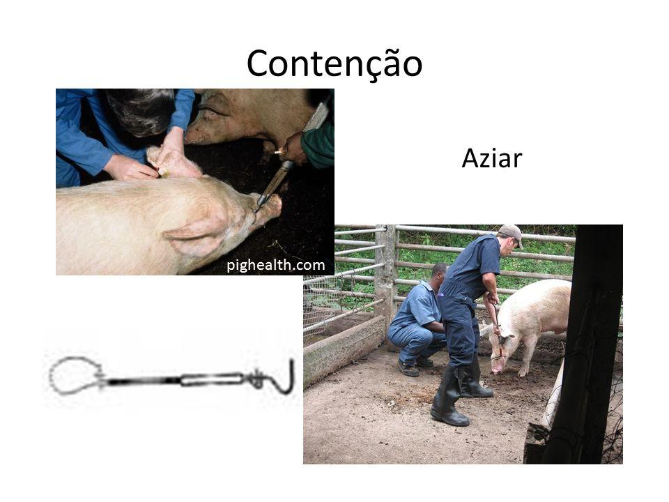 Contenção pighealth.com Aziar