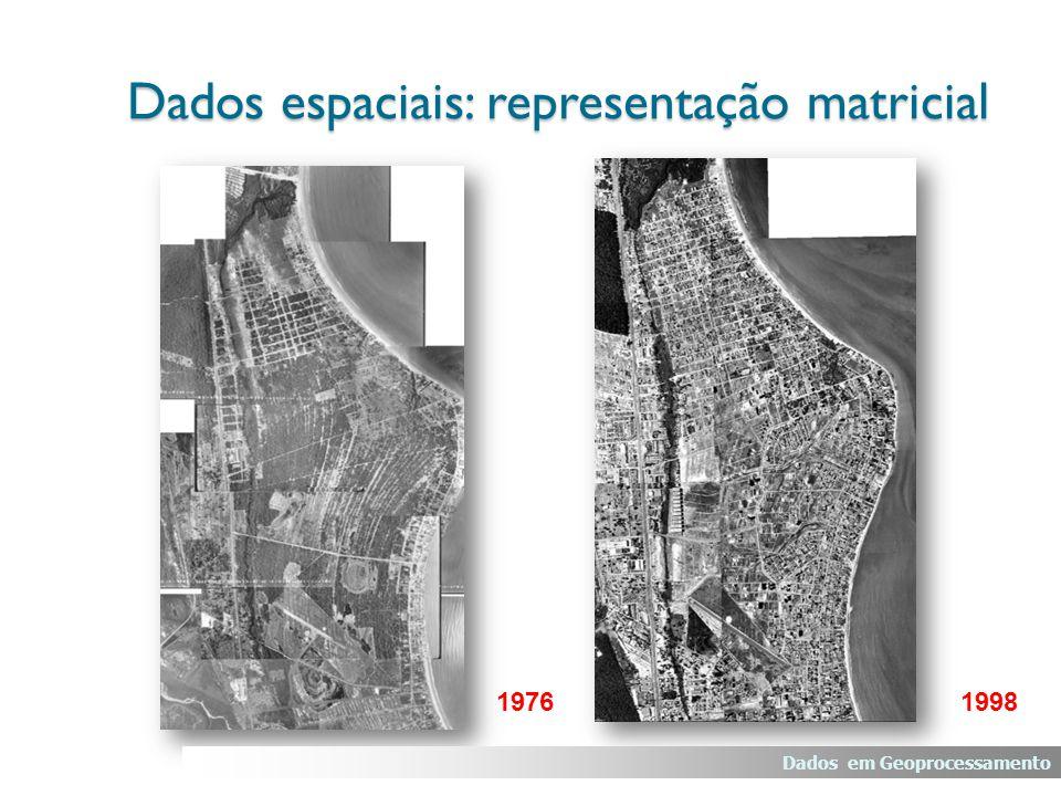 19761998 Dados em Geoprocessamento Dados espaciais: representação matricial 19761998