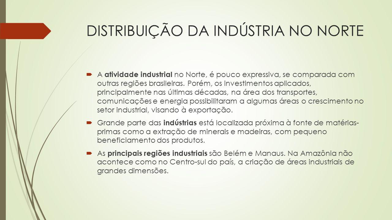 DISTRIBUIÇÃO DA INDÚSTRIA NO NORTE  A atividade industrial no Norte, é pouco expressiva, se comparada com outras regiões brasileiras. Porém, os inves