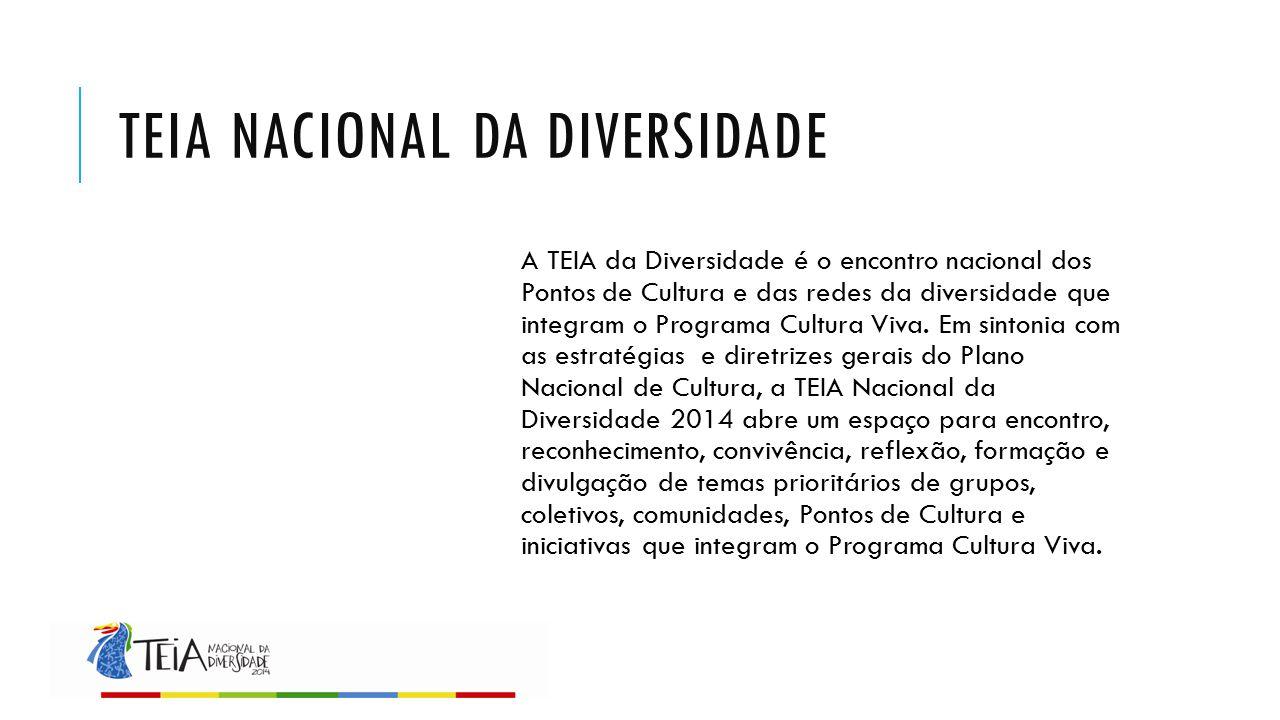 TEIA NACIONAL DA DIVERSIDADE A TEIA da Diversidade é o encontro nacional dos Pontos de Cultura e das redes da diversidade que integram o Programa Cult
