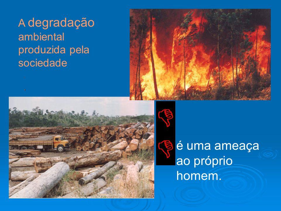 A degradação ambiental produzida pela sociedade é uma ameaça ao próprio homem.