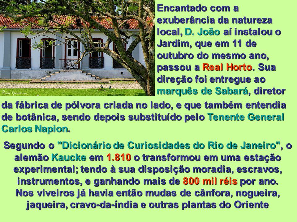 Casa sede do Engenho Nossa Senhora da Conceição da Lagoa construída em 1.576, considerada a mais antiga construção da Zona Sul do Rio de Janeiro