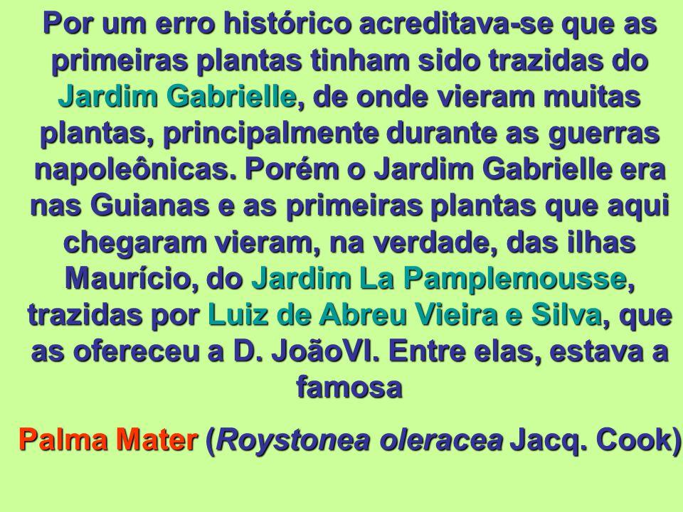 Com a Proclamação da Independência do Brasil em 1.822 o Real Horto foi aberto à visitação pública como Real Jardim Botânico. Adquirindo, a partir de e