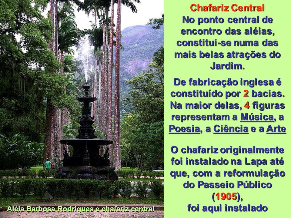 Aléia Barbosa Rodrigues Principal aléia do Jardim, constitui-se no seu cartão de visitas, ladeada por imponentes Palmeiras imperiais; de frente ao por