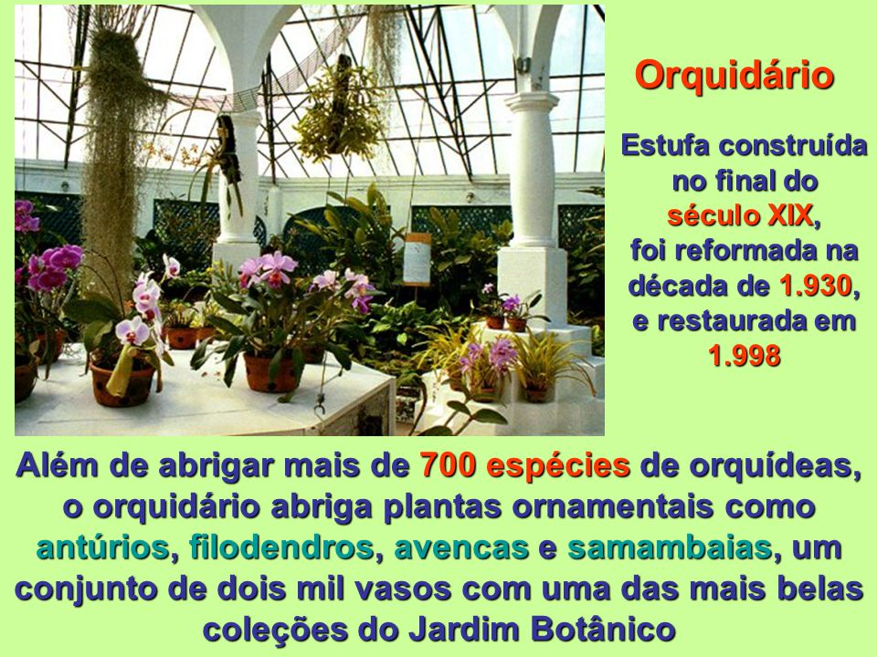 Orquidário, Bromeliário, Estufa das Plantas Insetívoras ou Carnívoras, Jardim Sensorial & Cactário