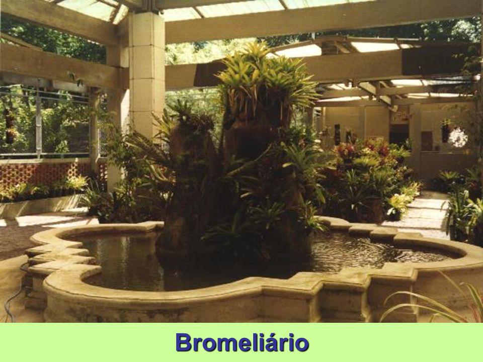 Bromeliário Maior bromeliário do Rio de Janeiro, reúne cerca de 1.700 exemplares das Américas do Sul e Central, muitas delas encontradas na Amazônia,