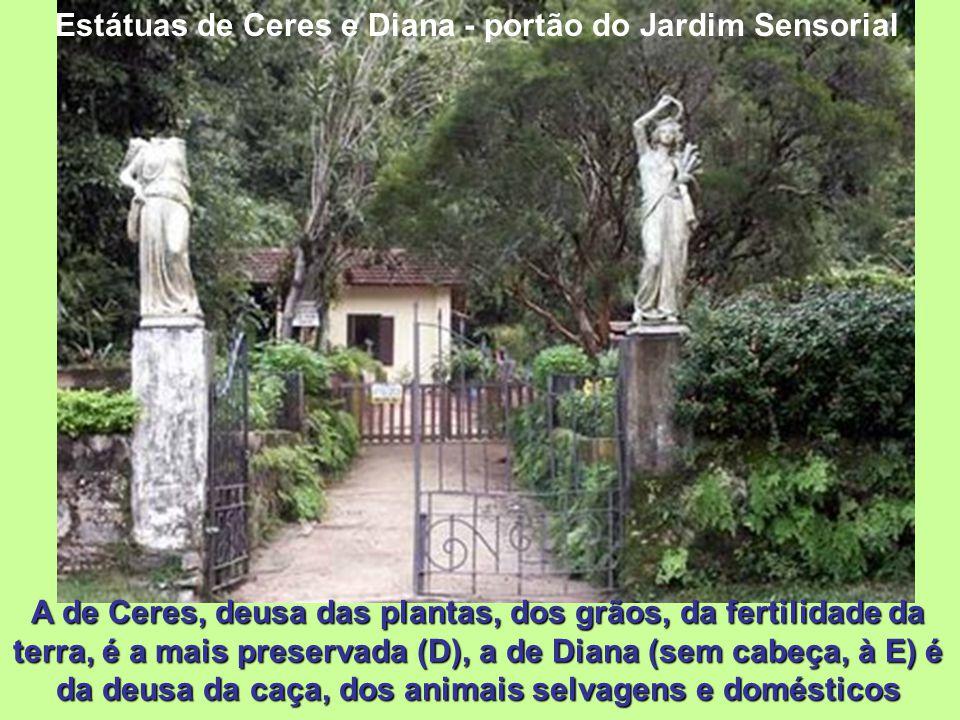 Jardim Sensorial Inaugurado em março de 1.995 foi concebido de maneira a que as suas plantas possam ser tocadas pelos visitantes, destinando-se partic