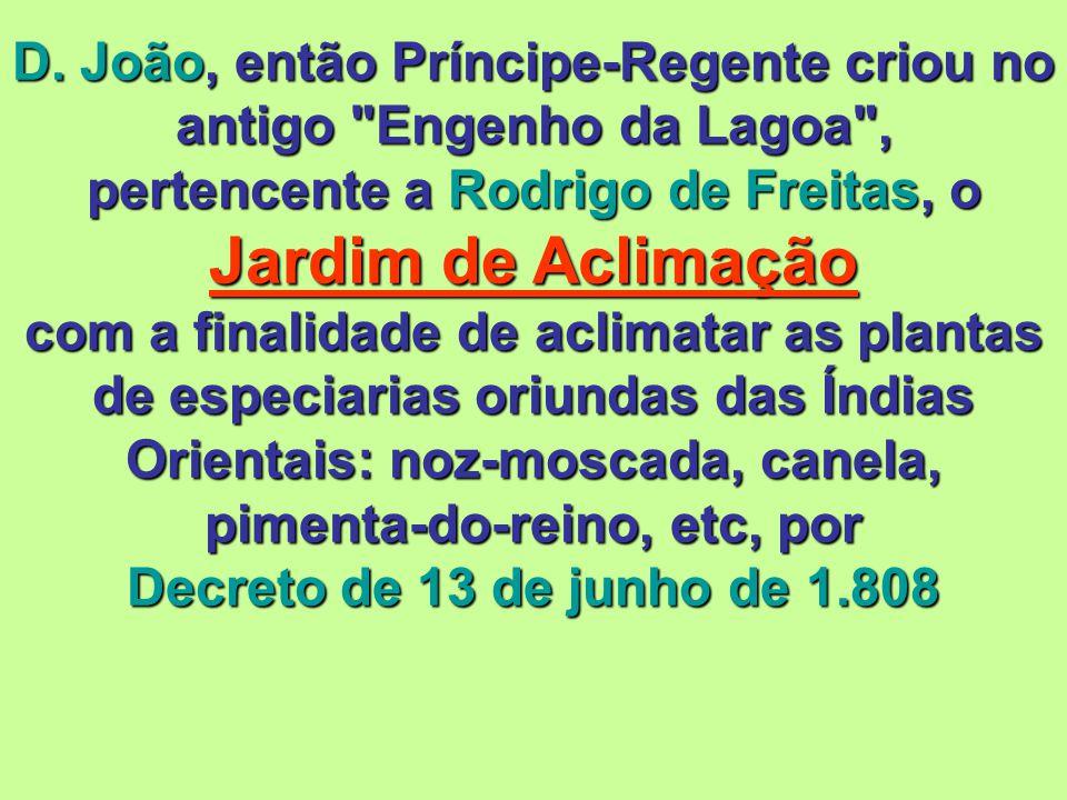 Sua origem remonta à vinda da Família Real Portuguesa para o Brasil (1.808), acompanhada pela Corte que, ao se fixarem no Rio de Janeiro, a cidade pas