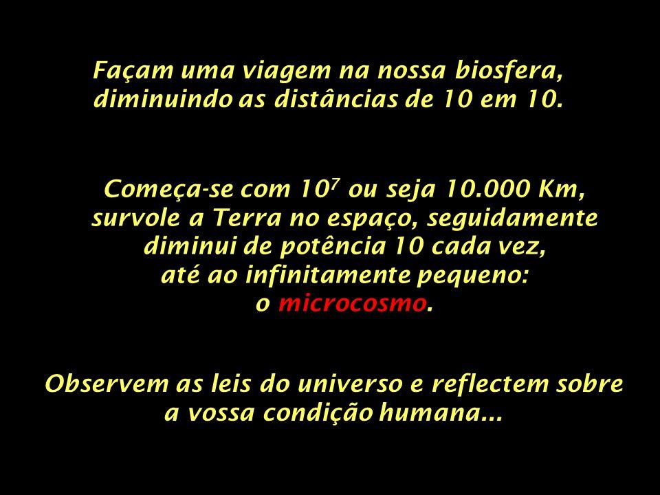 Neste mundo infinitamente pequeno vê-se os electrões no campo do átomo... 10 -11 10 picometros