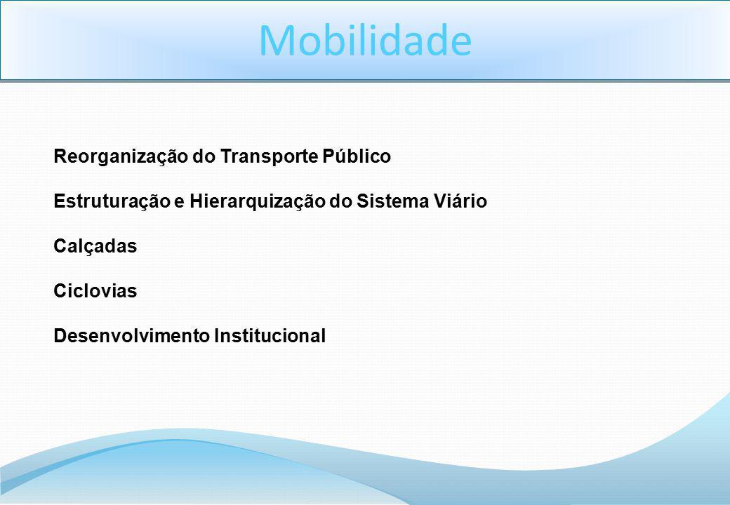 Reorganização do Transporte Público Estruturação e Hierarquização do Sistema Viário Calçadas Ciclovias Desenvolvimento Institucional