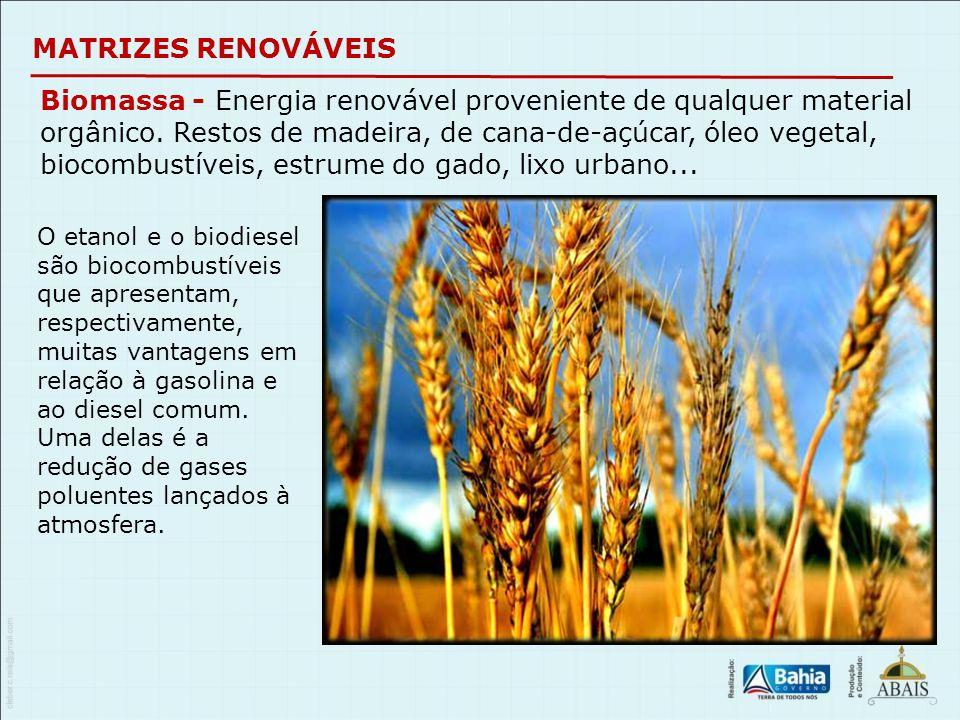 MATRIZES RENOVÁVEIS Biomassa - Energia renovável proveniente de qualquer material orgânico. Restos de madeira, de cana-de-açúcar, óleo vegetal, biocom