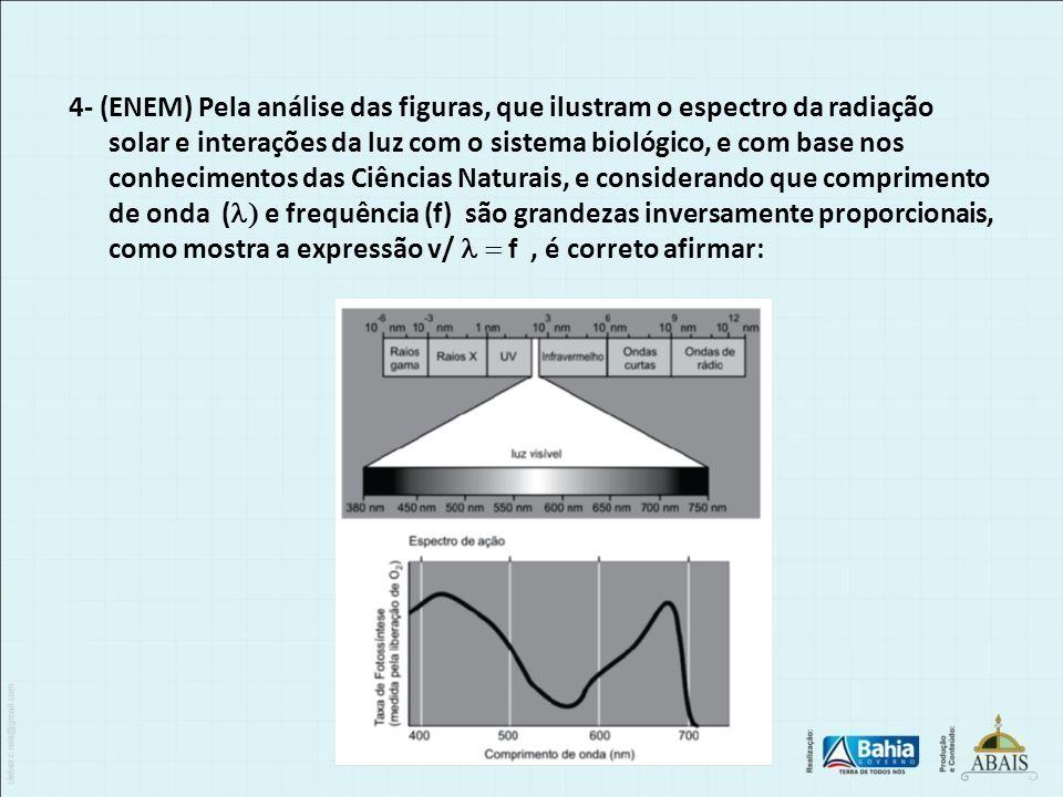 4- (ENEM) Pela análise das figuras, que ilustram o espectro da radiação solar e interações da luz com o sistema biológico, e com base nos conhecimento