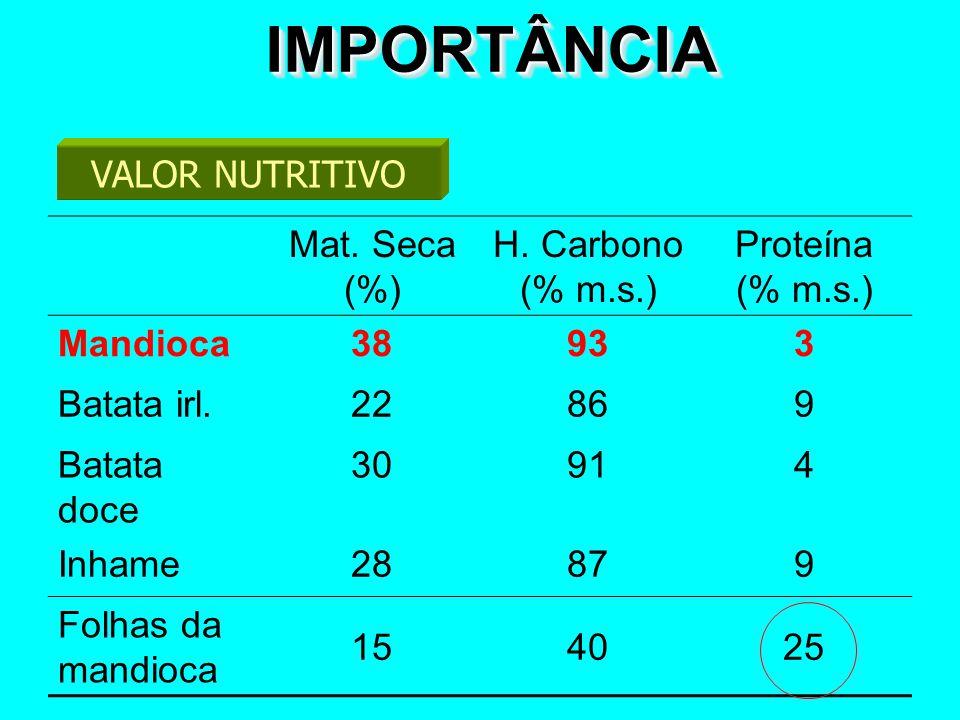 IMPORTÂNCIAIMPORTÂNCIA VALOR NUTRITIVO Mat. Seca (%) H. Carbono (% m.s.) Proteína (% m.s.) Mandioca38933 Batata irl.22869 Batata doce 30914 Inhame2887