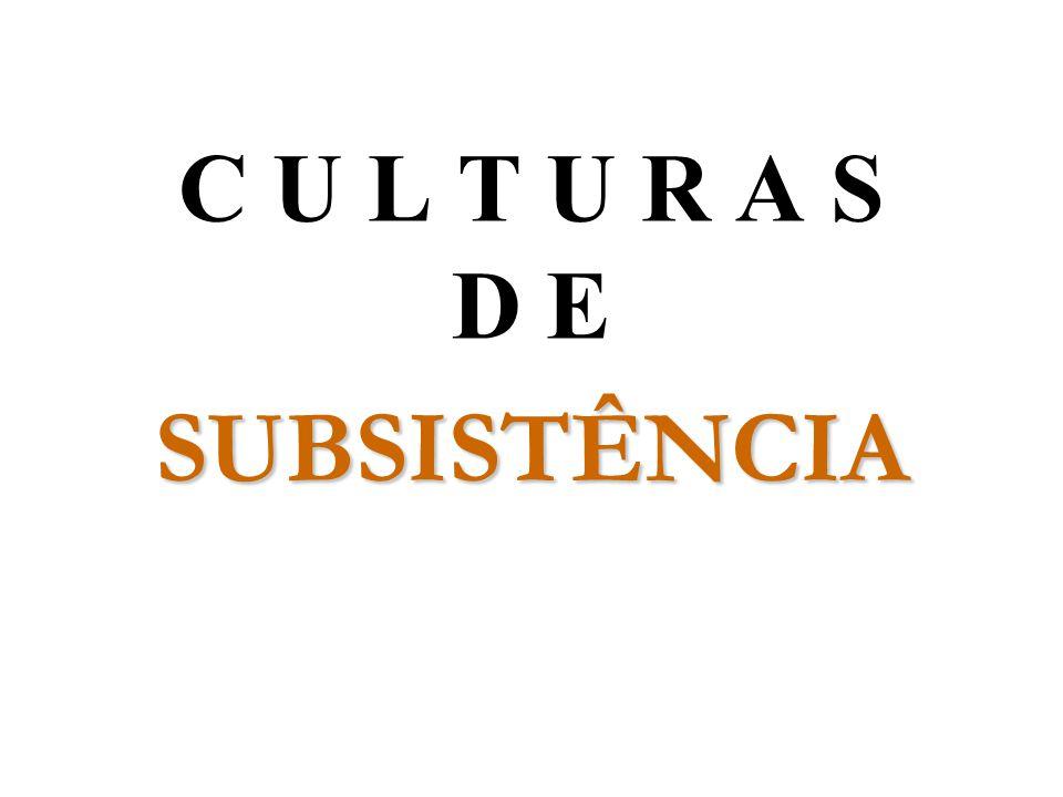 SUBSISTÊNCIA