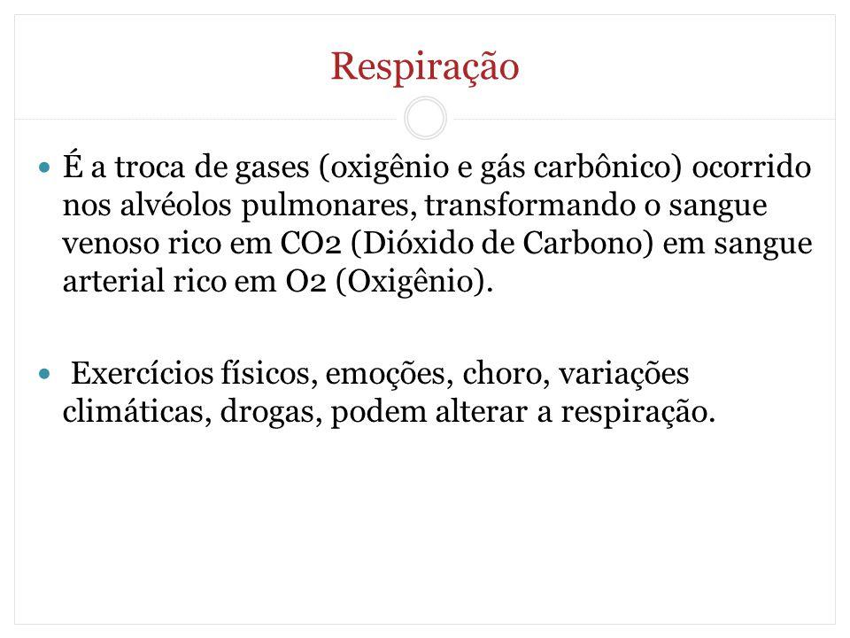 Respiração É a troca de gases (oxigênio e gás carbônico) ocorrido nos alvéolos pulmonares, transformando o sangue venoso rico em CO2 (Dióxido de Carbo