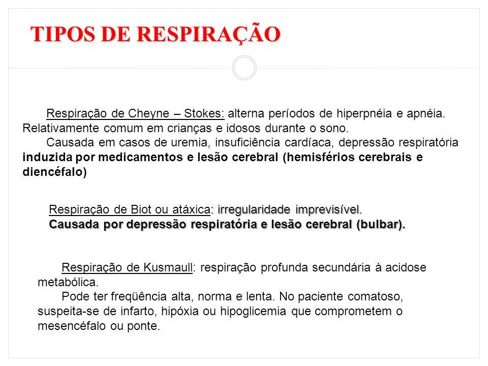 TIPOS DE RESPIRAÇÃO Respiração de Cheyne – Stokes: alterna períodos de hiperpnéia e apnéia. Relativamente comum em crianças e idosos durante o sono. C