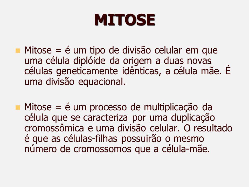 MITOSE Mitose = é um tipo de divisão celular em que uma célula diplóide da origem a duas novas células geneticamente idênticas, a célula mãe.