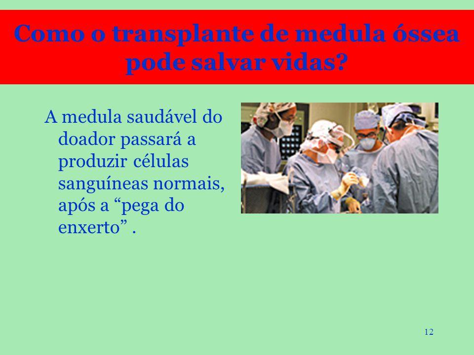 """12 A medula saudável do doador passará a produzir células sanguíneas normais, após a """"pega do enxerto"""". Como o transplante de medula óssea pode salvar"""