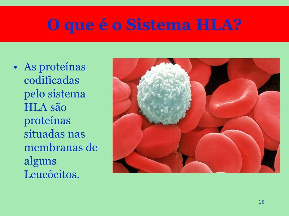 18 As proteínas codificadas pelo sistema HLA são proteínas situadas nas membranas de alguns Leucócitos. O que é o Sistema HLA?