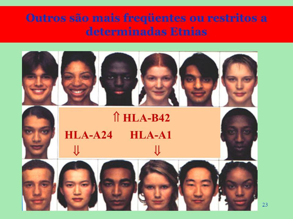 23  HLA-B42 HLA-A24 HLA-A1  Outros são mais freqüentes ou restritos a determinadas Etnias