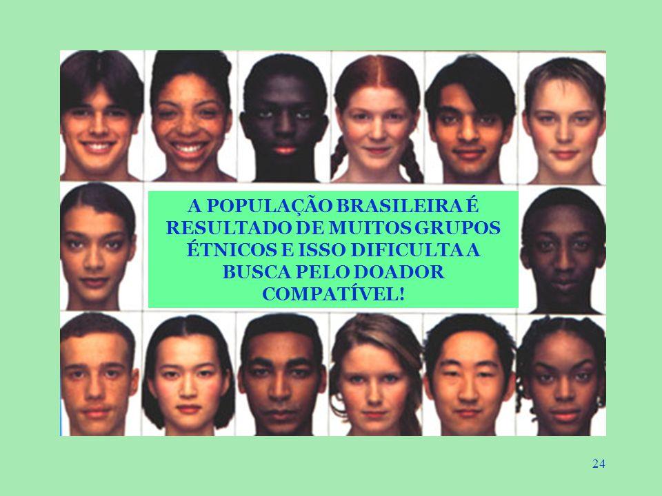 24 A POPULAÇÃO BRASILEIRA É RESULTADO DE MUITOS GRUPOS ÉTNICOS E ISSO DIFICULTA A BUSCA PELO DOADOR COMPATÍVEL!