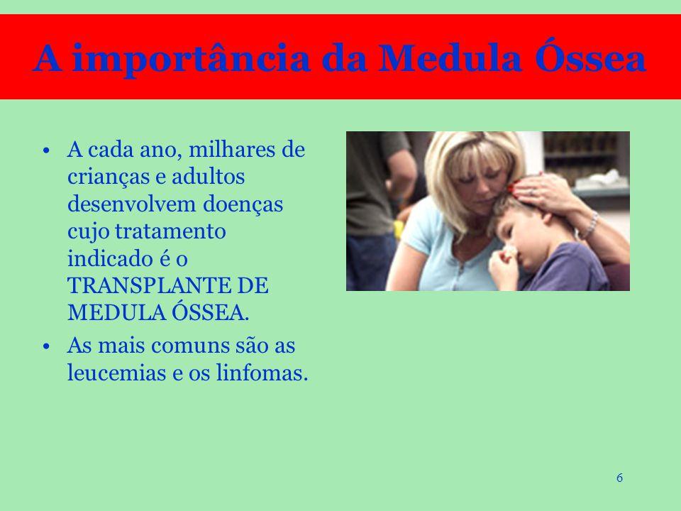27 Dirigir-se a um HEMOCENTRO que, por determinação do MS, deve ter uma EQUIPE ESPECIALIZADA para a CONSCIENTIZAÇÃO, COLETA e OUTRAS INFORMAÇÕES sobre a Doação Voluntária de Medula Óssea.