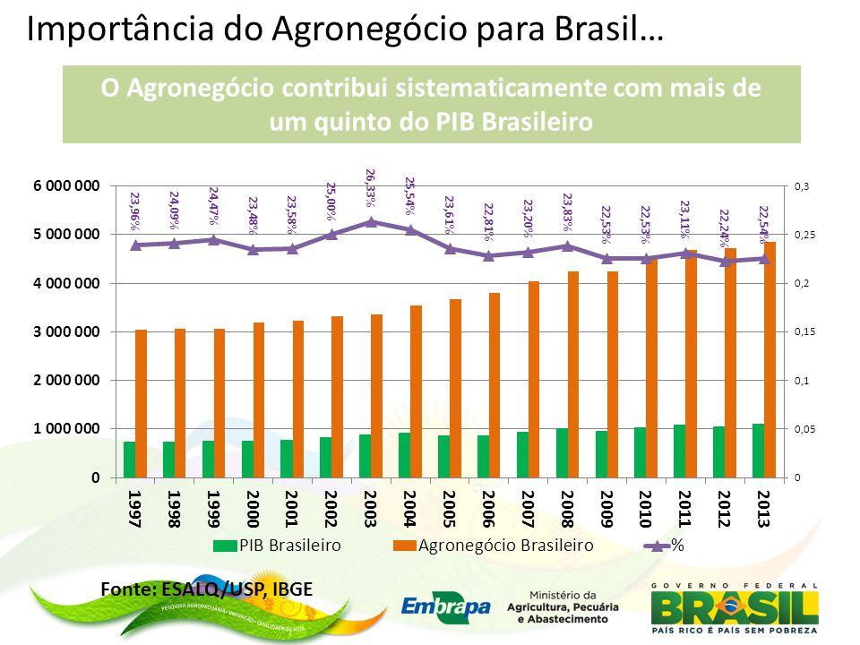 Importância do Agronegócio para Brasil… O Agronegócio contribui sistematicamente com mais de um quinto do PIB Brasileiro Fonte: ESALQ/USP, IBGE