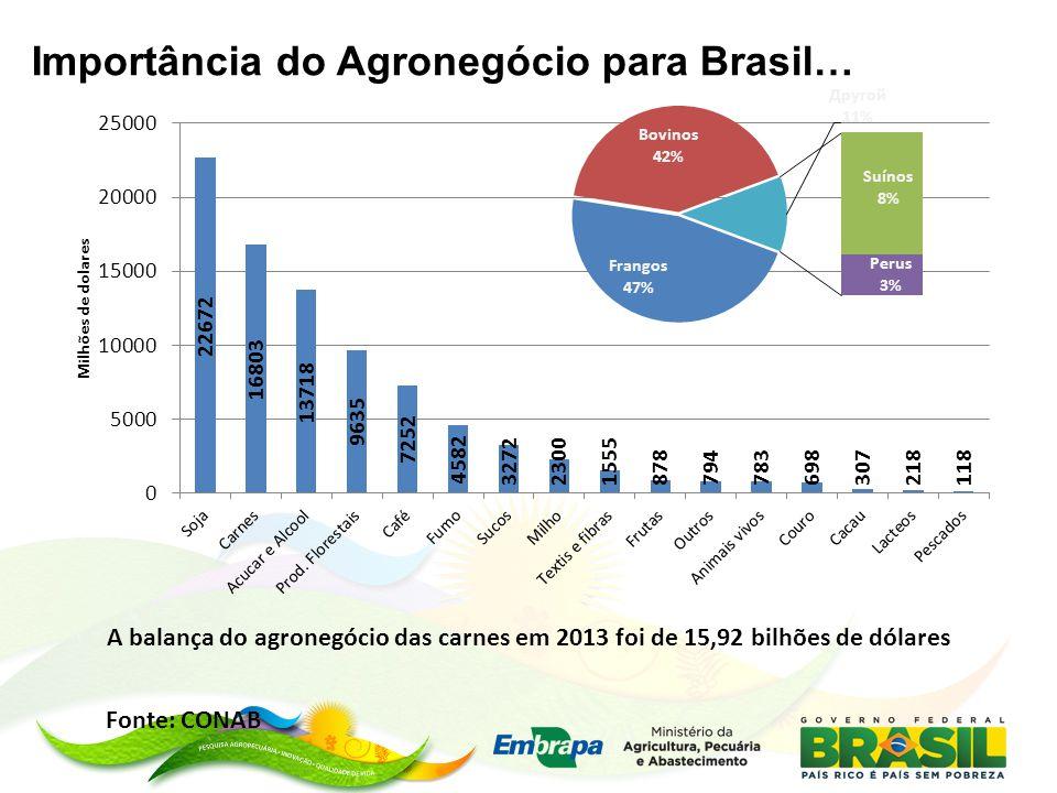 Importância do Agronegócio para Brasil… Fonte: CONAB