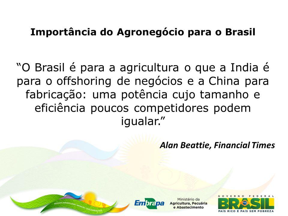 Importância do Agronegócio para o Brasil O Brasil é para a agricultura o que a India é para o offshoring de negócios e a China para fabricação: uma potência cujo tamanho e eficiência poucos competidores podem igualar. Alan Beattie, Financial Times