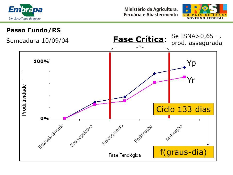 Passo Fundo/RS - Semeadura 10/09/04 Fase Crítica valor do ISNA com 80% de prob.