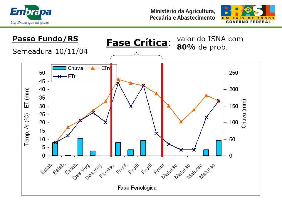 Passo Fundo/RS Semeadura 10/09/04 Fase Crítica: f(graus-dia) Se ISNA>0,65  prod. assegurada Ciclo 133 dias Yp Yr 100% 0%