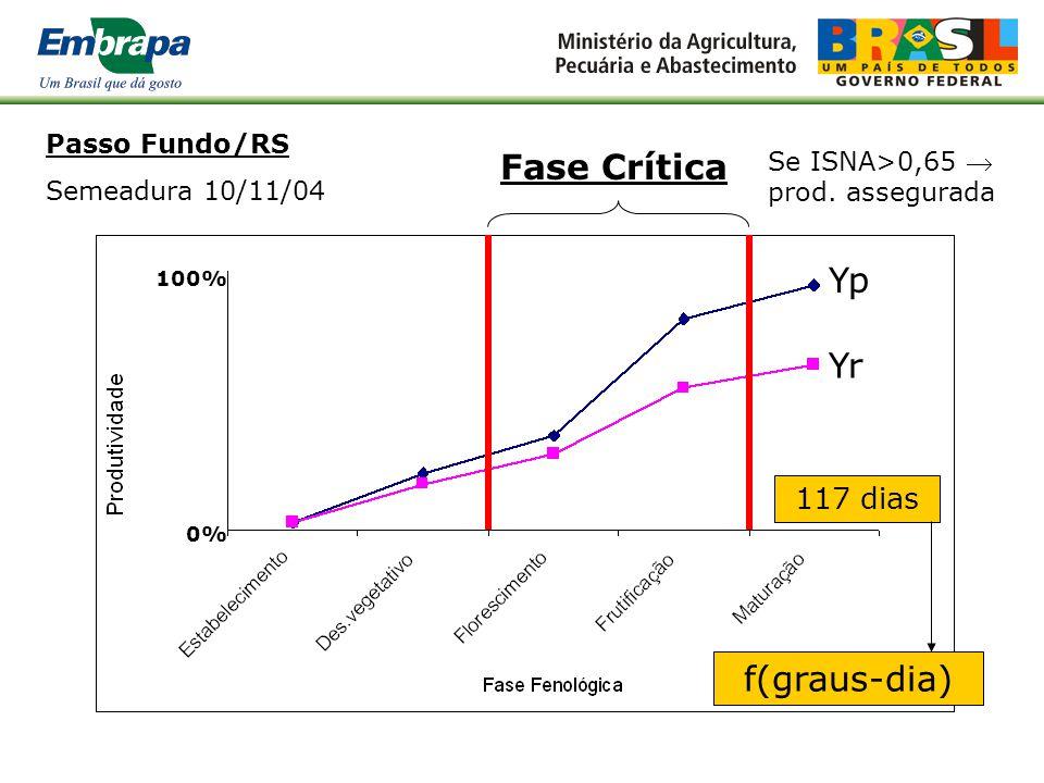 Passo Fundo/RS Semeadura 10/11/04 Fase Crítica: valor do ISNA com 80% de prob.