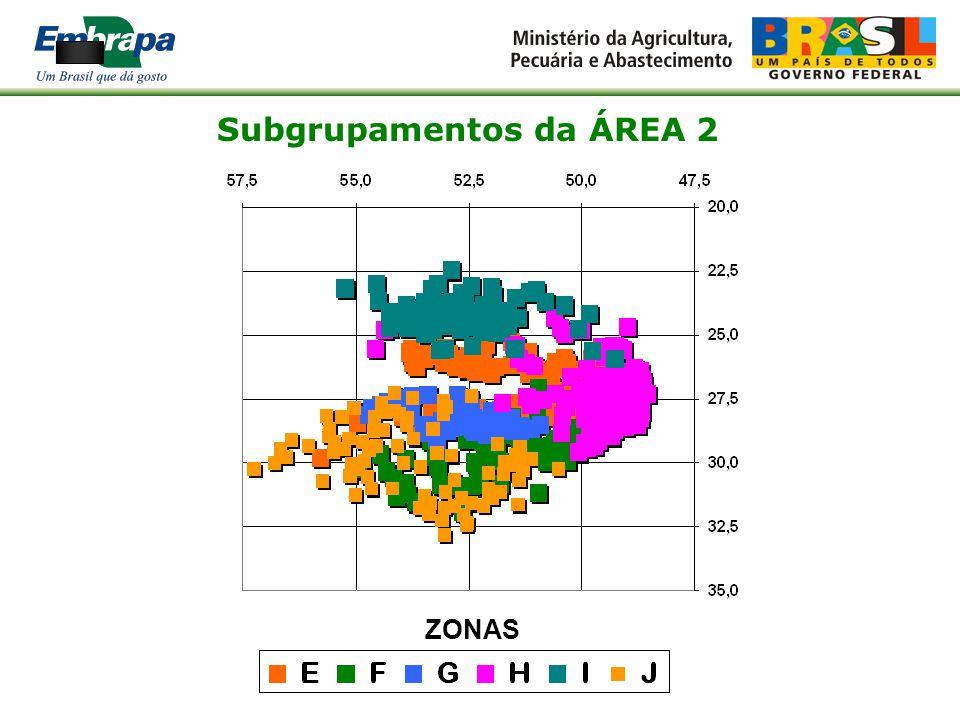 Subgrupamentos da ÁREA 1 ZONAS