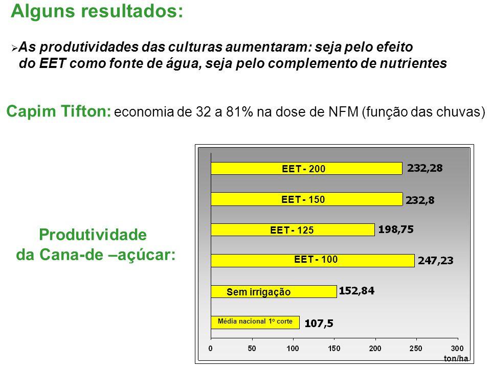 Alguns resultados:  As produtividades das culturas aumentaram: seja pelo efeito do EET como fonte de água, seja pelo complemento de nutrientes Capim