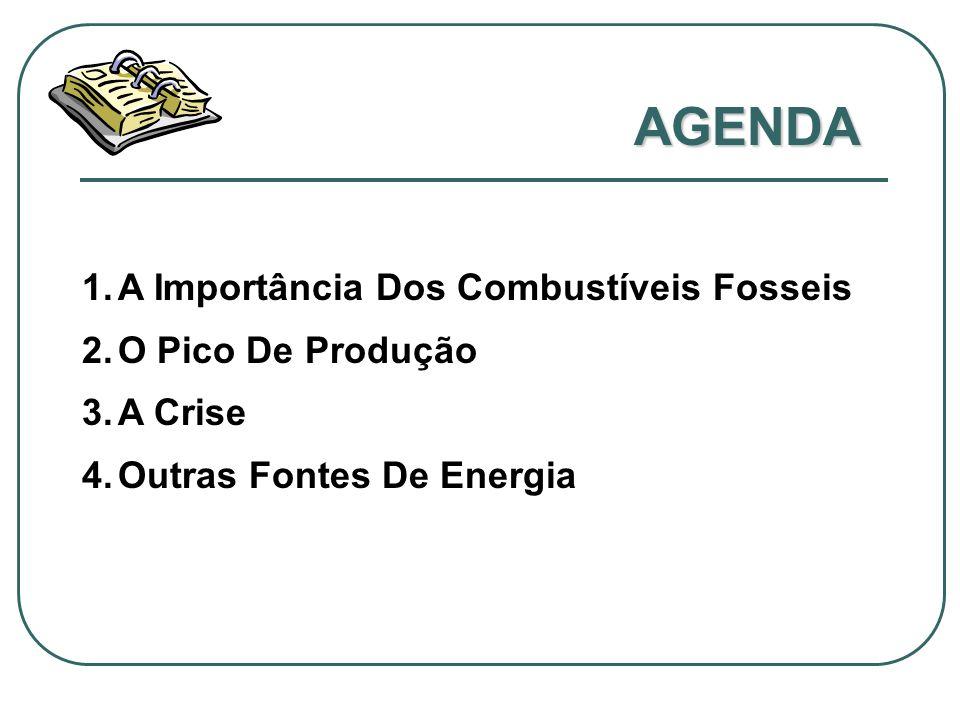 AGENDA 1.A Importância Dos Combustíveis Fosseis 2.O Pico De Produção 3.A Crise 4.Outras Fontes De Energia