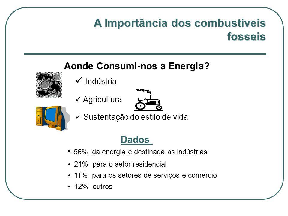 Aonde Consumi-nos a Energia? Indústria Agricultura Sustentação do estilo de vida 56% da energia é destinada as indústrias 21% para o setor residencial