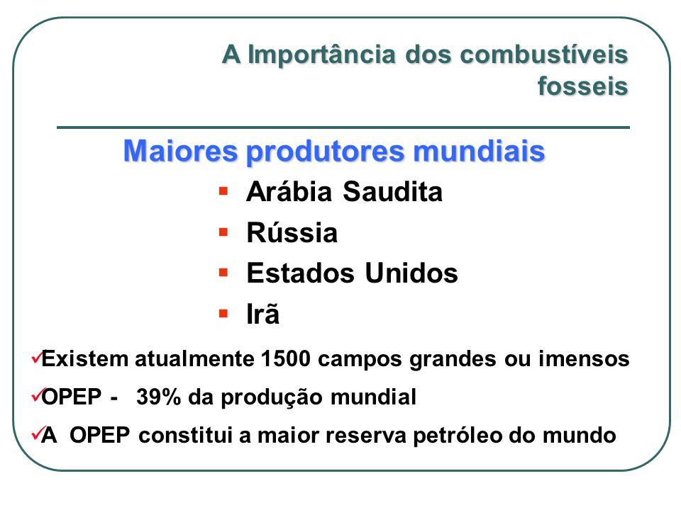 Maiores produtores mundiais  Arábia Saudita  Rússia  Estados Unidos  Irã Existem atualmente 1500 campos grandes ou imensos OPEP - 39% da produção