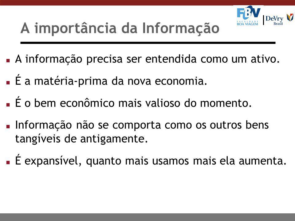 A importância da Informação n A informação precisa ser entendida como um ativo. n É a matéria-prima da nova economia. n É o bem econômico mais valioso