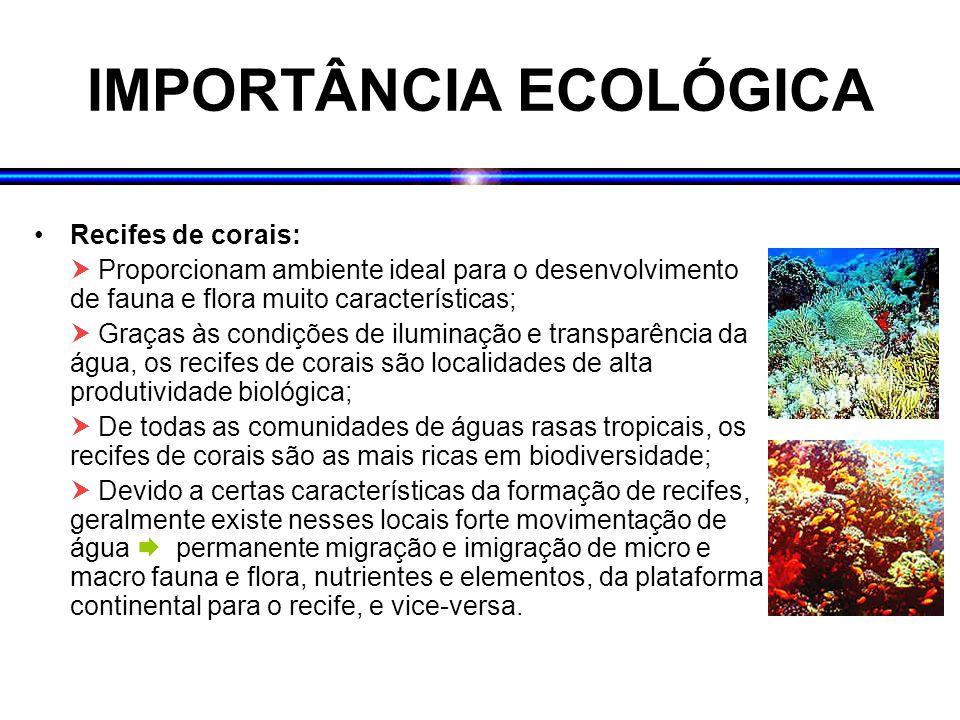 IMPORTÂNCIA ECOLÓGICA Recifes de corais:  Proporcionam ambiente ideal para o desenvolvimento de fauna e flora muito características;  Graças às condições de iluminação e transparência da água, os recifes de corais são localidades de alta produtividade biológica;  De todas as comunidades de águas rasas tropicais, os recifes de corais são as mais ricas em biodiversidade;  Devido a certas características da formação de recifes, geralmente existe nesses locais forte movimentação de água  permanente migração e imigração de micro e macro fauna e flora, nutrientes e elementos, da plataforma continental para o recife, e vice-versa.