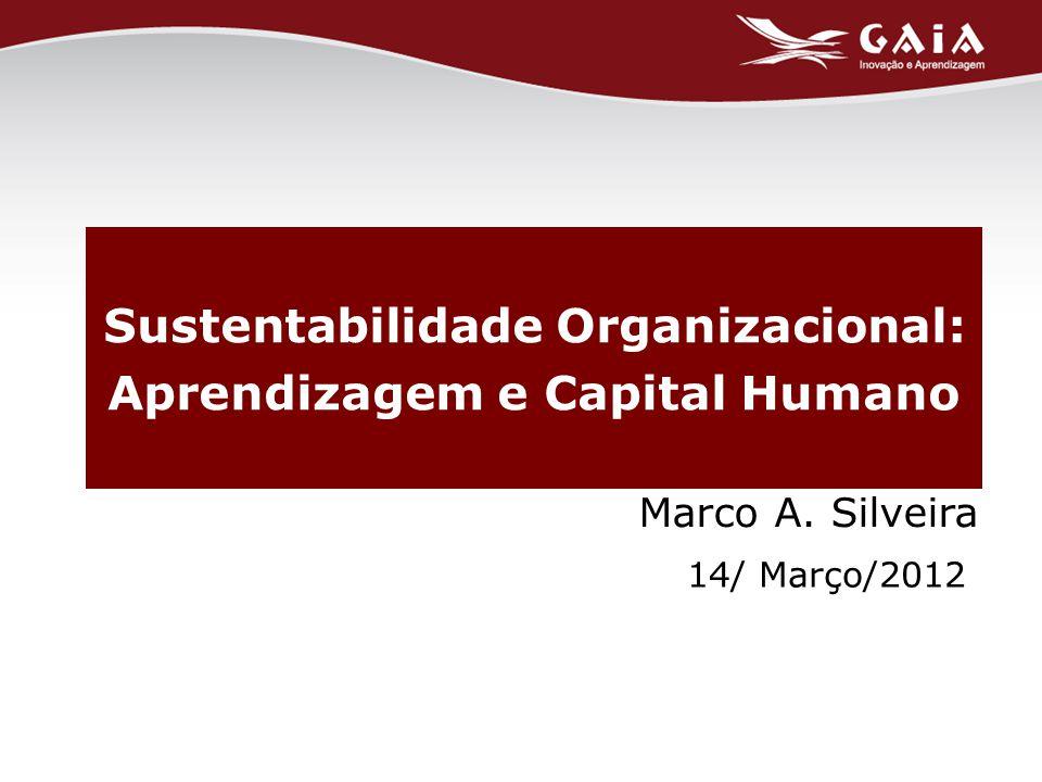 Marco A. Silveira 14/ Março/2012 Sustentabilidade Organizacional: Aprendizagem e Capital Humano